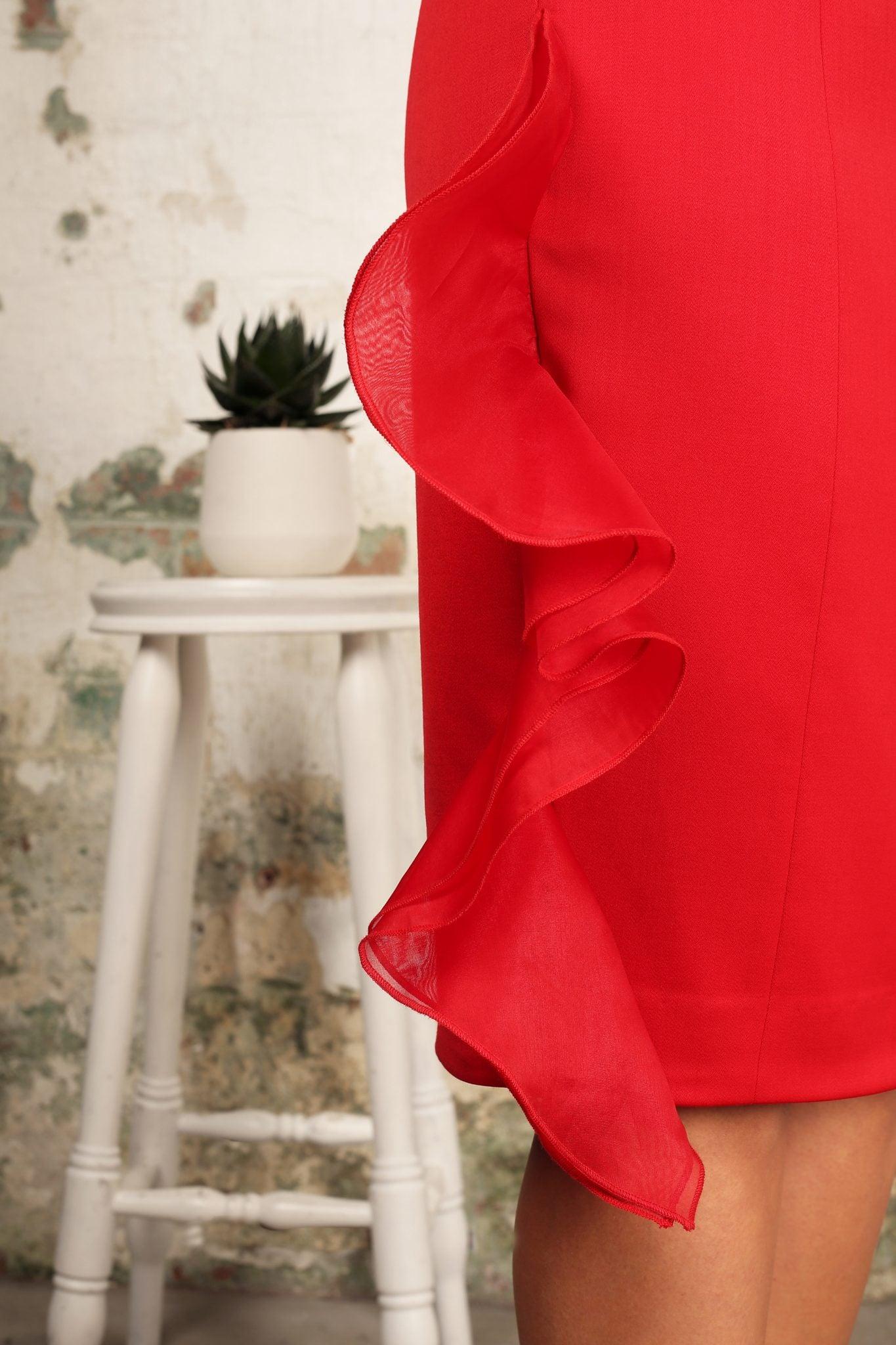 Organza Frill Dress1